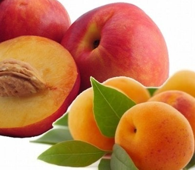 peche-abricot